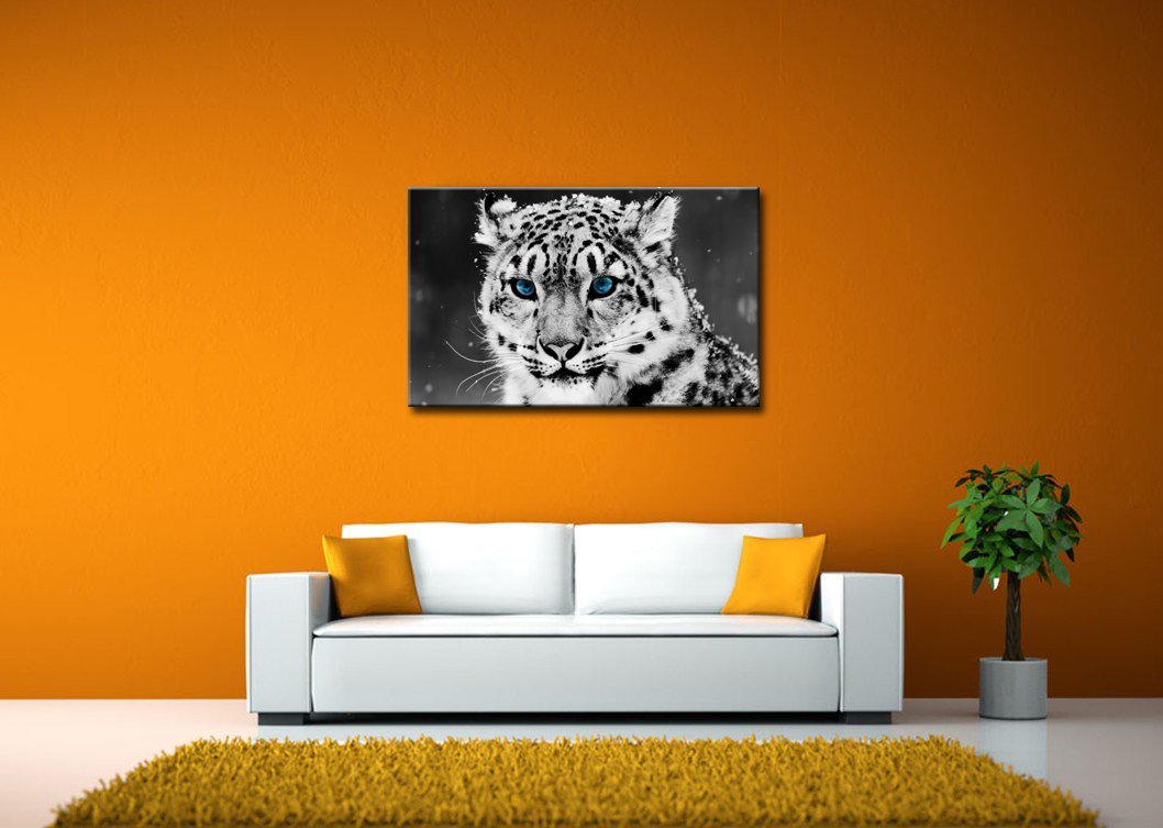Amazon So Crazy Art Black And White Wall Art Painting Blue Eye