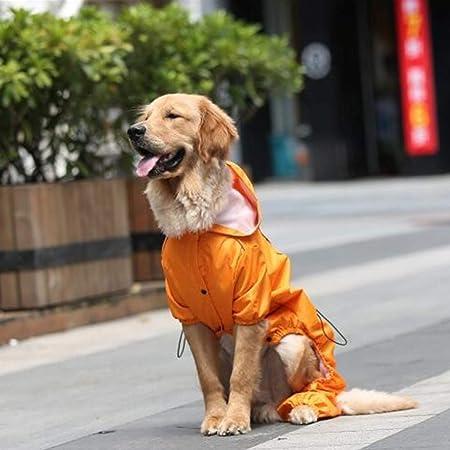 Gxianwengen Perro Impermeable Kappa Perro pequeño Perro ...