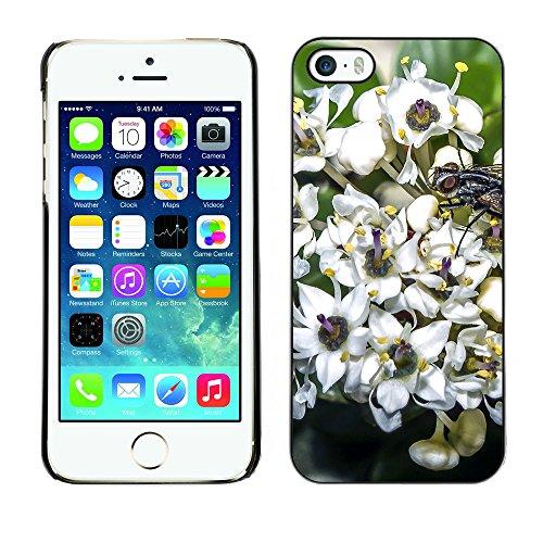 Premio Sottile Slim Cassa Custodia Case Cover Shell // F00010658 une fleur // Apple iPhone 5 5S 5G