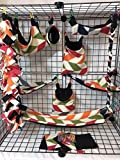 15 Piece Multi Color Broken Chevron Sugar Glider Cage Set