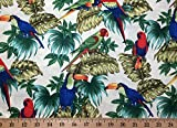 Tropical Birds Jungle Parrots Toucan Bird Tree Leaf Red Green Blue Natural Handcrafted Curtain Valance Review