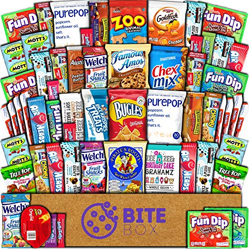 BiteBox Care Package (60 Count) Snacks Cookies Bars Chips - Import It All