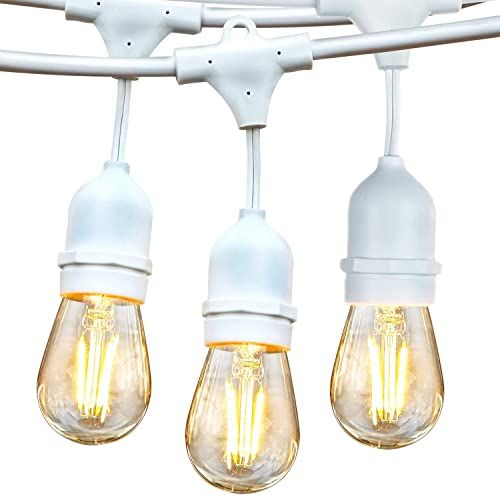 Brightech Ambience Pro – White, Waterproof LED Outdoor String Lights – Hanging 2W Vintage Edison Bulbs – 48 Ft Cafe Lights Create Bistro Ambience in Your Gazebo, Back Yard