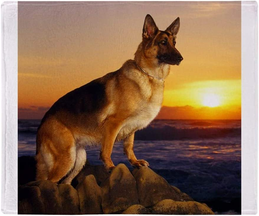Cafepress Beautiful German Shepherd Throw Blanket Soft Fleece Throw Blanket 50 X60 Stadium Blanket Home Kitchen