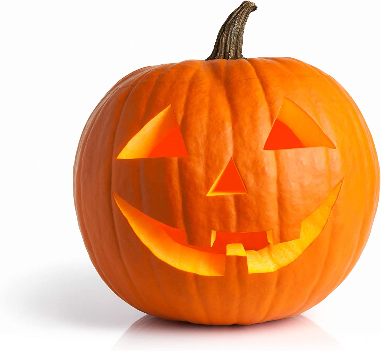 Pumpkin Seeds for Planting - to Plant Jack O' Lantern Pumpkins