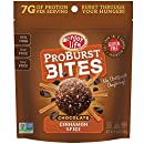 Enjoy Life ProBurst Protein Bites Gluten-Free, Dairy-Free, Nut-Free and Soy-Free, Vegan, Chocolate Cinnamon Spice, 6.4 Ounce (6 Count)
