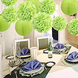 BTSD-home Paper Decorations Tissue Paper Pom Pom Flowers Paper Lanterns for Wedding Birthday and Special Festival Party Decoration(7 Pack, Green)