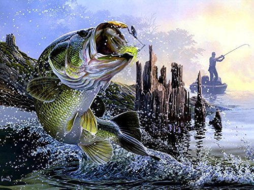 Tomorrow sunny 24X36 INCH / ART SILK POSTER / Bass Fishing L