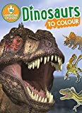 Dinosaurs to Colour