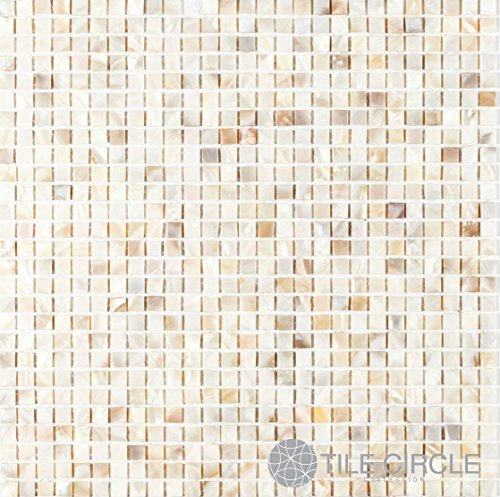Genuine Mother of Pearl Shell Tile Natural Varied 3/8