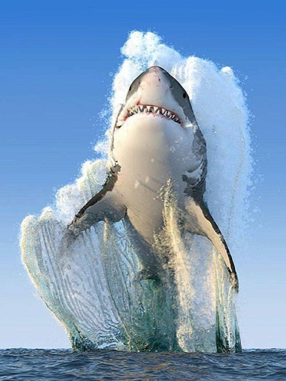 WSSHUIYI Pintura 5D diamante para adultos y niños Tiburón saltando Taladro completo Bordado redondo Kits de punto de cruz Artesanía Decoración Colgante de Pared Casero-40x50cm