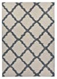 Moroccan Trellis Shag Area Rug Rugs New Shaggy Collection (Ivory, 6'7″X9'6″) Review