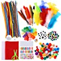 Caydo Assorted Pipe Cleaner Craft Kit Chenille Stems Pom Poms Wiggle Googly Eyes Feather and Felt, Foam Balls for Kids DIY Art Supplies Set