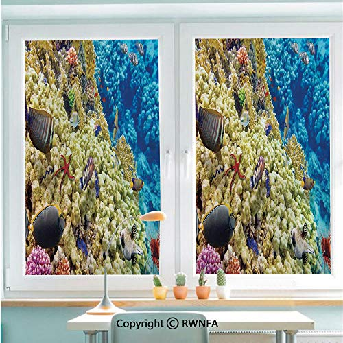 RWNFA Removable Static Decorative Privacy Window Films Colorful Life Natural Environment Deep Down in The Sea Scenery Exotic Holiday Picture for Glass (22.8In. by 35.4In),Blue Beige