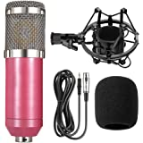 BM-800 Professional Cardioid Studio Condenser Microphone Bundle, with Shock Mount and Windproof Cotton for Studio Recording &