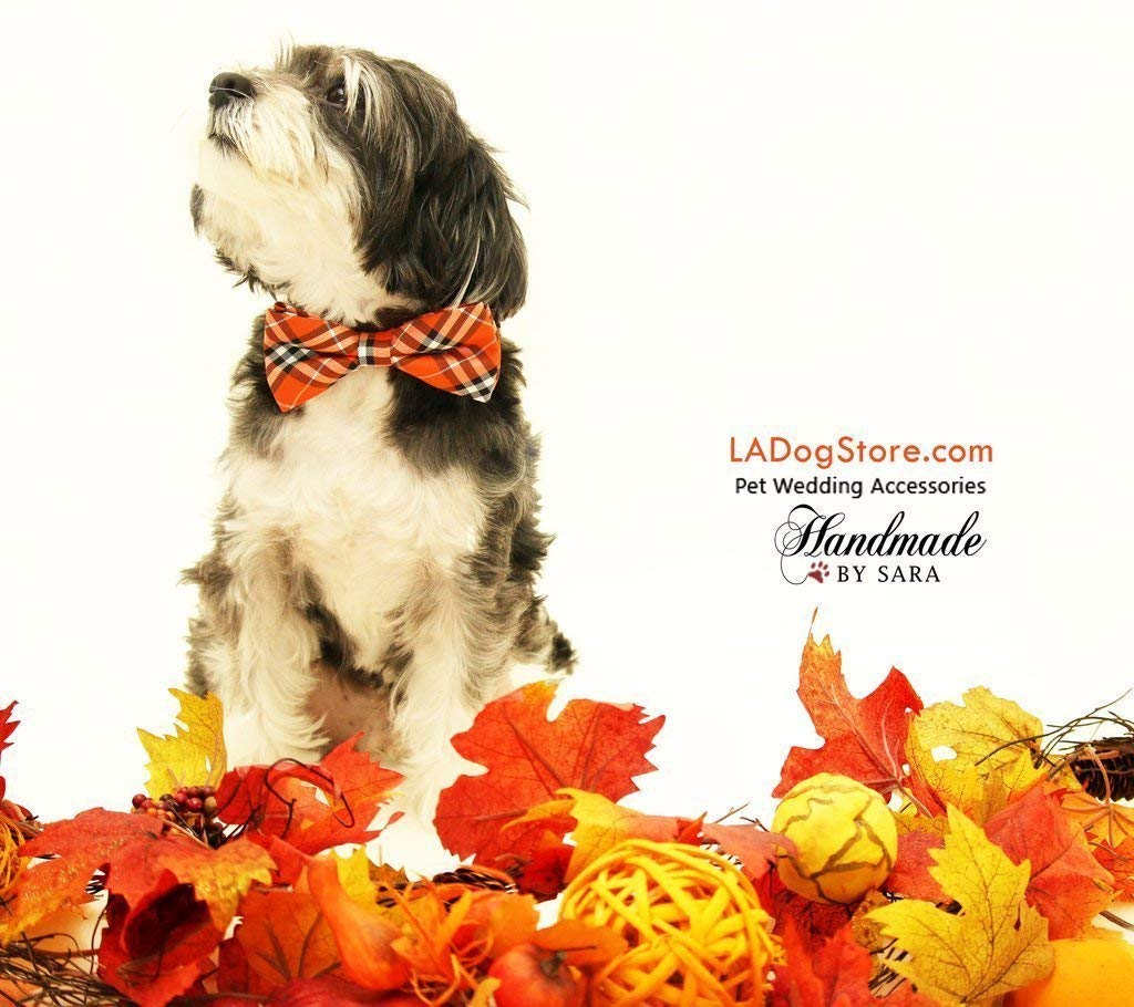 Orange cream and black plaid bow tie for dog or cat Cozy and Warm