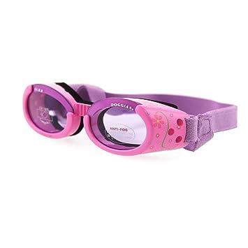 Doggles DODGILMD-15ILS Medium Lilac Flower Frame with Purple Lens Dog  Goggles  Amazon.ca  Pet Supplies e1e7510b40