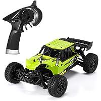 CookJoy RC Auto 1: 18 Scala 29km / h 2.4GHz Telecomando Truck High Speed Racing Car Toy Veicolo ad Alta velocità per Adulti e Bambini