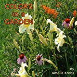 Colors in a Garden, Amelia Krebs, 1598792555