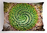 Ambesonne Plant Pillow Sham, National Flower of Lesotho South of Africa Aloe Polyphylla Spinning Spiral Aloe Vera, Decorative Standard Queen Size Printed Pillowcase, 30 X 20 inches, Multicolor