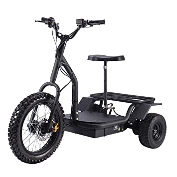 Amazon Com Electric Tricycle Say Yeah 3 Wheel 1200w Electric Trike