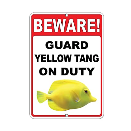 Amazon Com Beware Guard Yellow Tang On Duty Funny Quote Aluminum