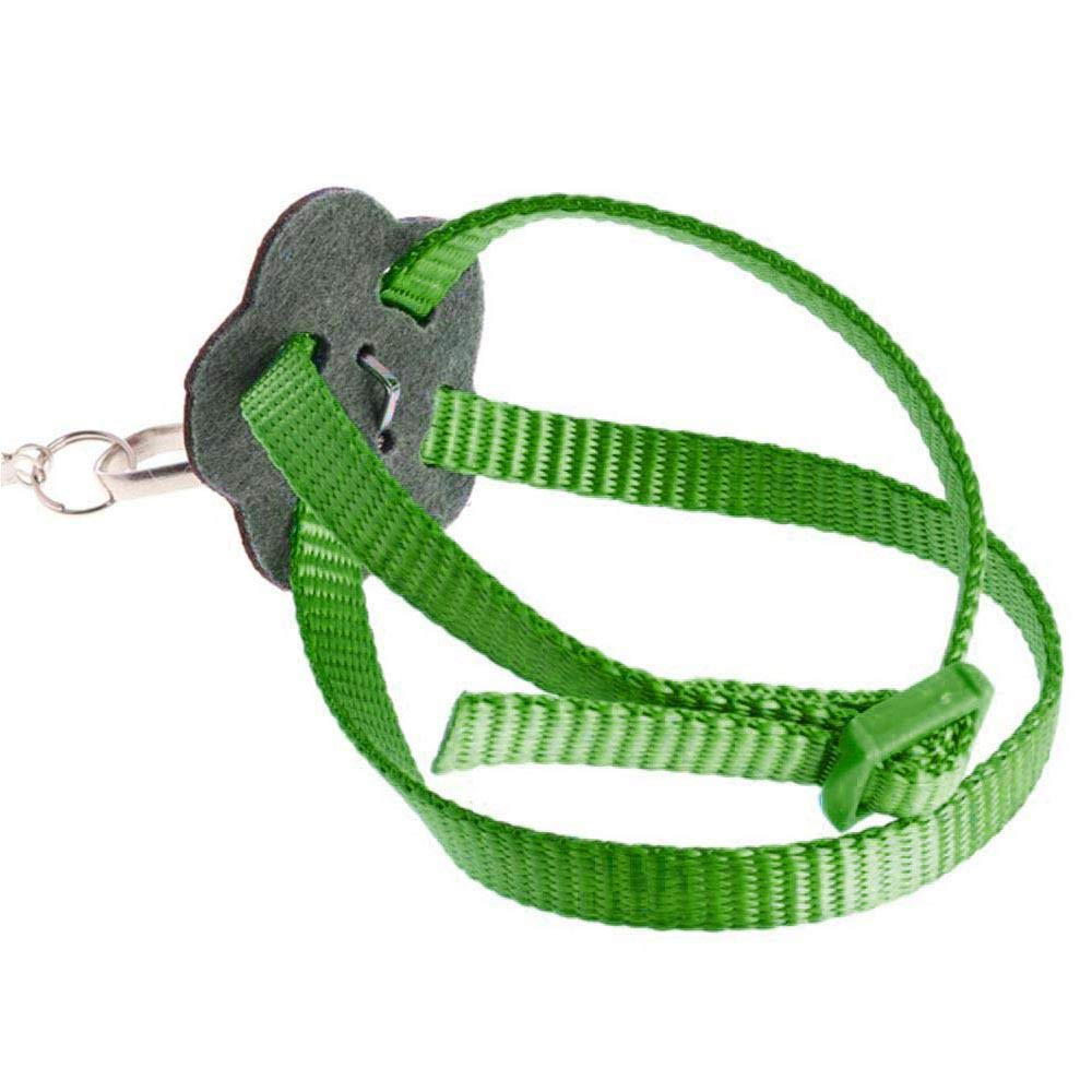Pet Bird Harness and Leash Black Auoker Adjustable Bird Flight Rope for Ringneck Parrot African Greys Budgies Parakeet Cockatiel Cockatoo Conure Macaw Finch Lovebird Traing and Playing