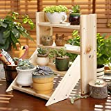 Pergolas/flower racks Creative Solid Wood Desktop Flower Racks Office Windowsill Mini Storage Shelves Bonsai Bonsai Plant Display Stand flower display stands (Color : B)