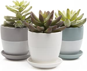 Chive - Set of 3 Dyad Small 3 Inch Succulent Planter Pot, Clay Flower and Plant Container, Drainage Hole/Saucer, Mini Pot for Indoor/Outdoor Garden and Home Decor, (Green, Grey, White)