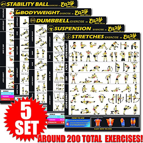 Eazy How To 5 Pack Bundle Exercise Workout Poster Big 20 x 28 Train Endurance, Tone, Build Strength & Muscle Home Gym Chart