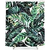 Tropical palm leaves, printed polyester shower curtain, shower curtain, waterproof mouldproof hook 72 x 72 company