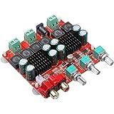 Ferrell TPA3118 2.1 Kanal Digital Stereo Subwoofer Endstufe Platine Endstufe