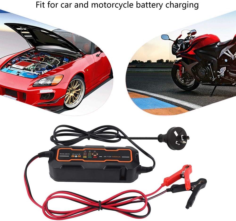Chargeur de Batterie Automatique en Plastique Chargeur de Batterie 6V 12V Mainteneur de Batterie Chargeur de Batterie Portable Universel pour Voiture Moto Camion Bateau Noir 5A