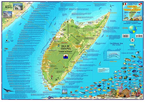 Franko Maps Cozumel Mexico Dive Snorkel & Adventure Guide Map Poster (Map Dive Cozumel)
