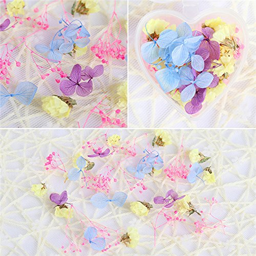 Nails Art Accessories - 1 Box Dried Flowers Nail Decoration Mixed Preserved Flower With Heart-Shaped Box DIY Manicure 3D Nail Decorations Nail Art Kit Nail Charms Nail Jewelry/Decorations - Pattern 3