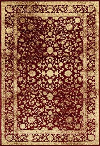 2817 Distressed Burgundy Rust 5 x 7 Area Rug Carpet Large New