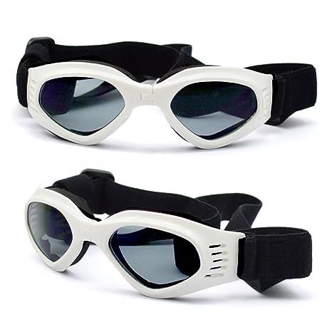 Mascota Perro gafas de sol - gafas de protección gafas de ...