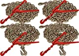 "5/16"" x 20' G70 Tie Down Chain and 5/16"" - 3/8"" G70 Lever Chain Binder (8pc Set)"
