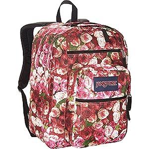 JanSport Big Student Backpack- Discontinued Colors (Multi Vintage Rose)