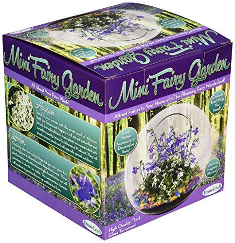 Dunecraft Mini Fairy Garden Science Kit by DuneCraft (Image #1)