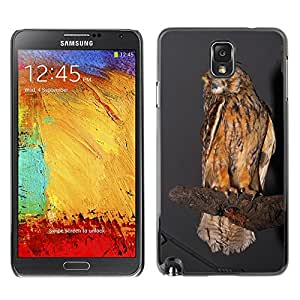 Etui Housse Coque de Protection Cover Rigide pour // M00108217 Pájaro Búho Real Hunting Trophy relleno // Samsung Galaxy Note 3 III N9000 N9002 N9005