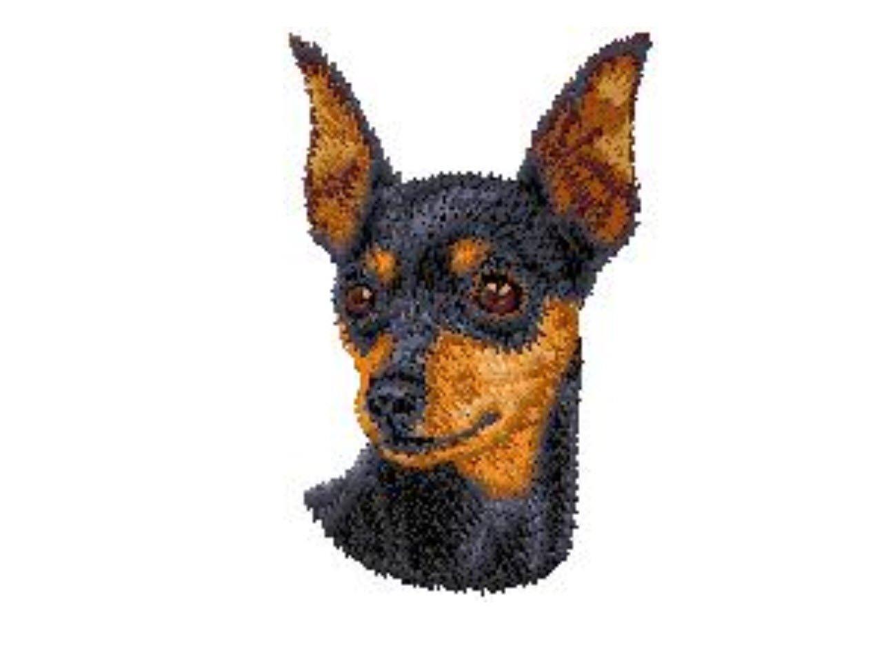 Miniature Pinscher Custom Embroidered Sweatshirt Shirt