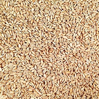 product image for Grains Oats, Whole, Hulled, Toasted, 25-Pound