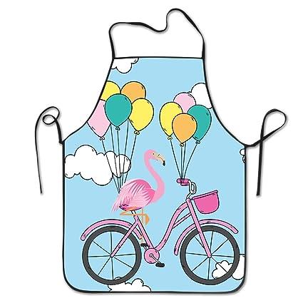 Amazon.com: FRICSTAR Fashion Apron Flamingo On A Bicycle ...