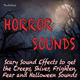 Resurrection of the Vampire: Church Bell, Thunderstorm, Organ Sound, Vampire - Background Horror Sound Atmosphere Halloween