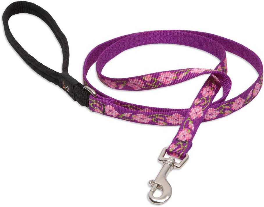 LupinePet 1/2 Inch Rose Garden Padded Handle Dog Leash