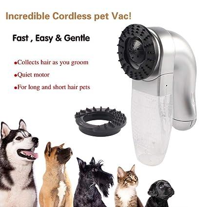 Amazon.com: Productos Perro Perro suministros mascota ...