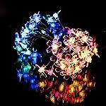 50 Multi-Colour LED Blossoming Flower...