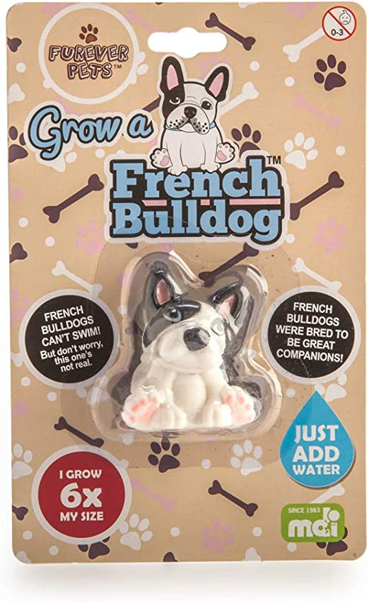 Choose Color V and T Gifts Animal French Bulldog Dog Pet
