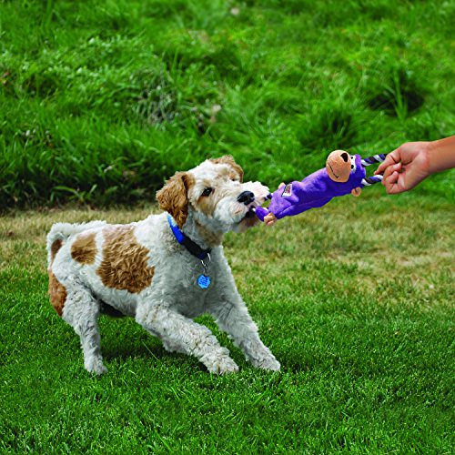 KONG - Tugger Knots Moose - Tug of War Dog Toy, Minimal Stuffing and Looped Ropes for Added Strength - for Medium/Large Dogs
